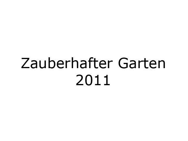 Zauberfest20111